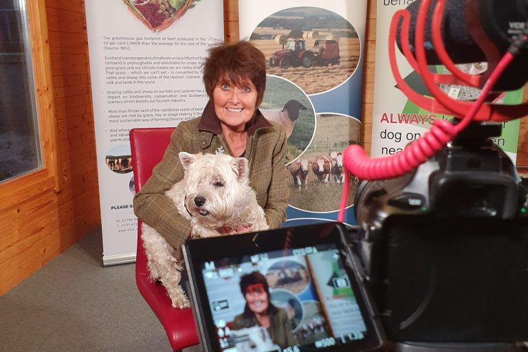 Farmers mental health Film and video production